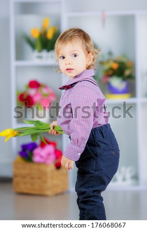 beautiful little boy in the room with tulips and heart. March 8, International Women's day,