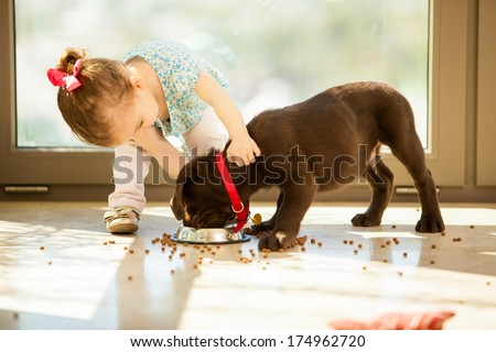 Beautiful little girl watching her puppy eat in the living room - stock photo