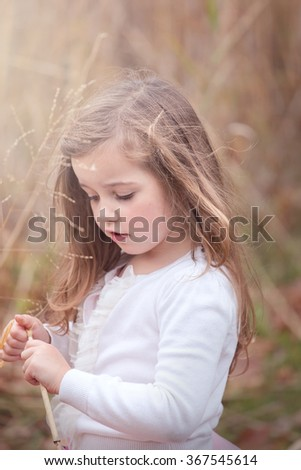 Beautiful little girl wearing a cream sweater picking a dry weed and looking down - stock photo