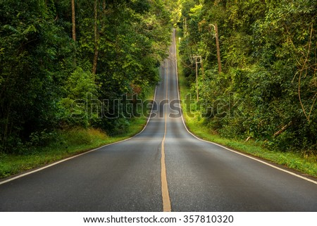 Beautiful long way road along into forest  - stock photo