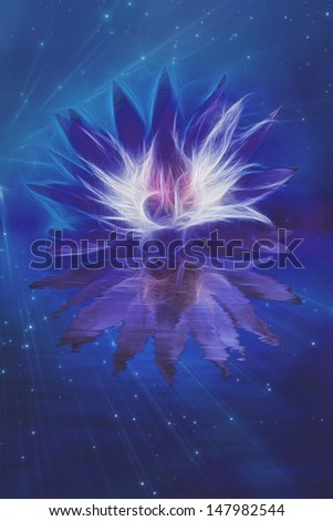 Beautiful Lotus Flower Abstraction - stock photo