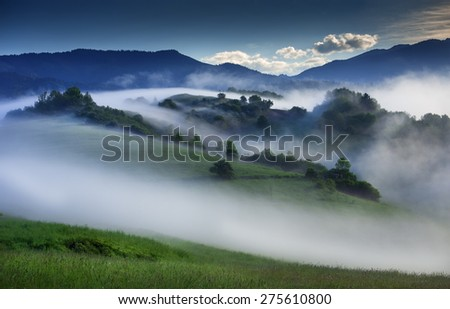 beautiful magical mountain meadow landscape in morning mist