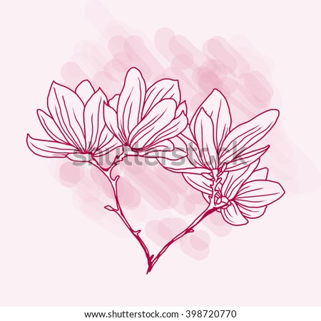 Beautiful magnolia flowers in hand drawn style, pink colors