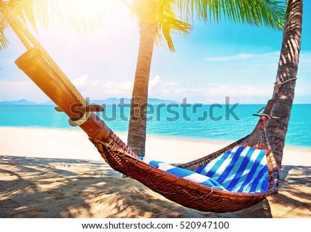 beautiful male beach and hammock  empty hammock between palms at sandy beach  summer holiday beautiful male beach hammock empty hammock stock photo      rh   shutterstock