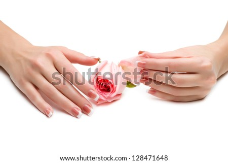 Beautiful manicure with a rose,isolated on white background - stock photo