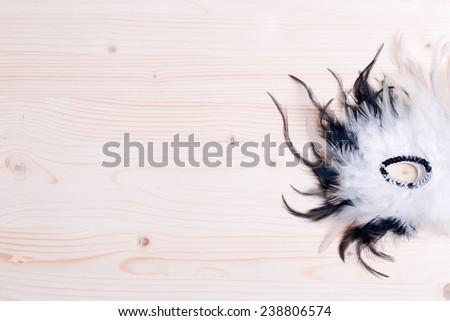 beautiful mask of feathers light board - stock photo