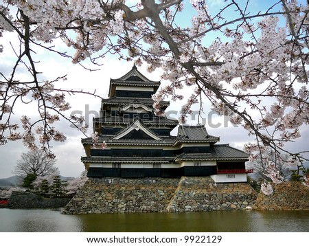 """Beautiful Matsumoto castle during Sakura (cherry blossom). For its dark colour this castle is also called """"Crow's Castle"""", as opposed to white Himeji Castle, which is called """"Heron's Castle"""". - stock photo"""