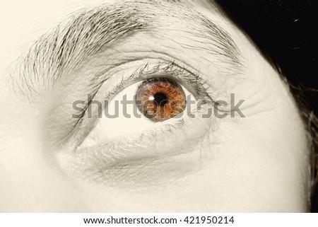 Beautiful mature woman brown eyes closeup - stock photo