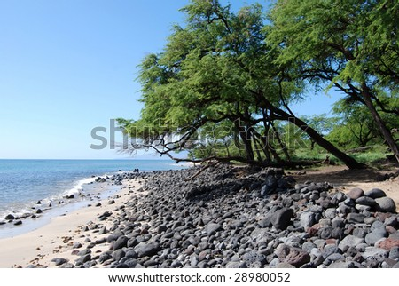 beautiful maui beach - stock photo