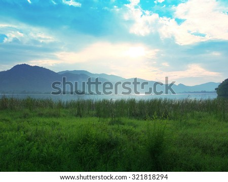 Beautiful Meadow in Shiny Day - stock photo