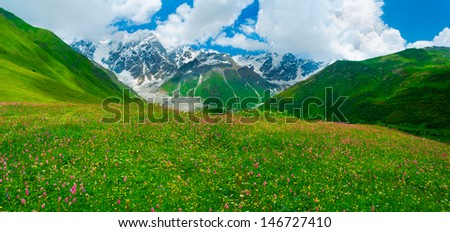 Beautiful meadow landscape near Ushguli, Svaneti, Georgia. Shkhara mountain in the background - stock photo