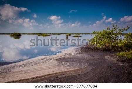 Beautiful Merritt Island preserve ponds at dawn - stock photo
