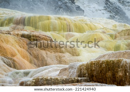 beautiful mineral deposits in mammoth hot springs, yellowstone national park