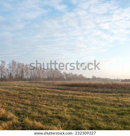 beautiful misty meadow in the morning frost in country