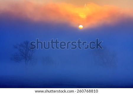 Beautiful misty morning - stock photo