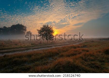 Beautiful misty sunrise landscape. Rural road, - stock photo