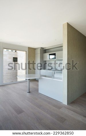 beautiful modern house, domestic kitchen, parquet floor