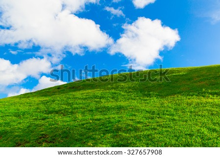 Beautiful morning green field with blue sky - stock photo