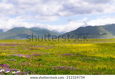 Beautiful mountain landscape on a summer day - stock photo
