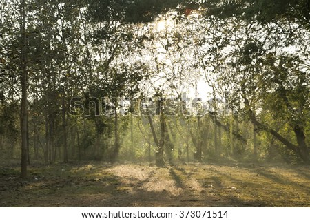Beautiful mountain landscape under mist in the morning in Lampang ,Thailand - stock photo