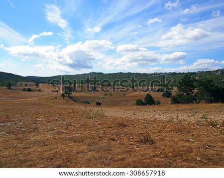 Beautiful mountain landscape with a rider on a horse          - stock photo