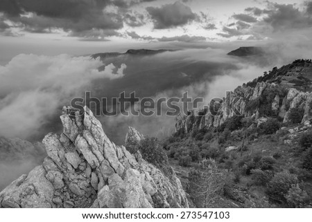 Beautiful mountain landscape with high cliffs and trees in a valley. Black and white