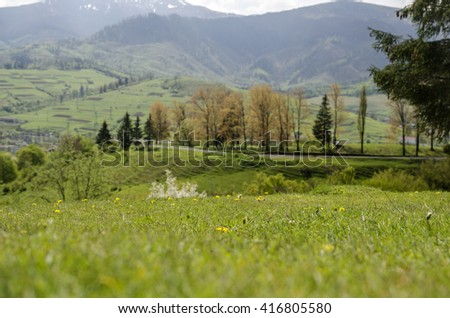 Beautiful mountain lawns with green summer grass. Vacations concept - stock photo