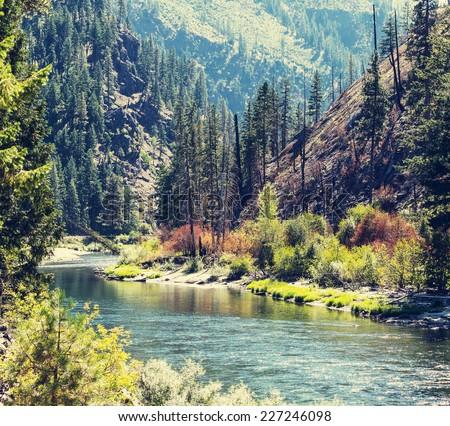 Beautiful mountain river - stock photo