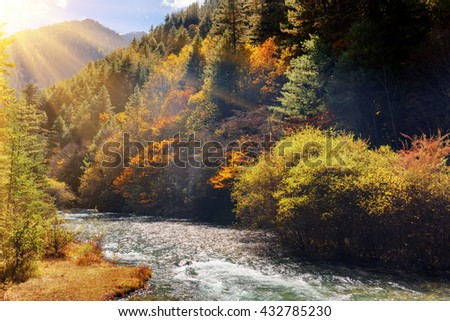 Beautiful mountain river with crystal clear water among evergreen forest and colorful fall woods in Jiuzhaigou nature reserve (Jiuzhai Valley National Park), China. Scenic sunny autumn landscape. - stock photo