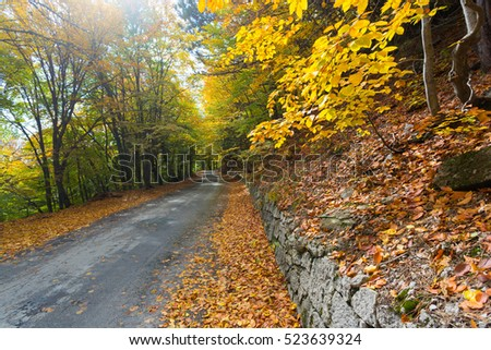Beautiful mountain road in autumn