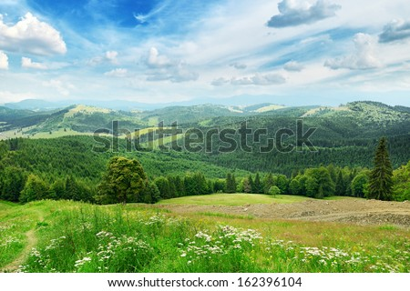 Beautiful mountains covered trees                                     - stock photo