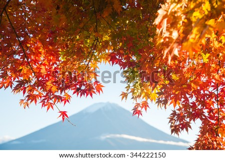 Beautiful Mt Fuji with Red Maple tree in Autumn - stock photo
