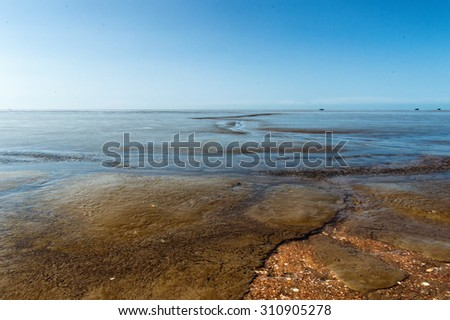 Beautiful Mudflats at The Coast of Suriname, South America