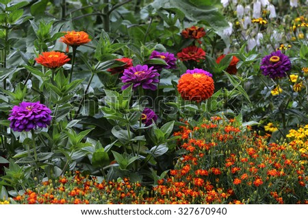 beautiful multicolored flowerbed in garden, horizontal picture - stock photo