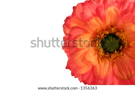 Beautiful mum isolated on white with plenty of space for text - stock photo