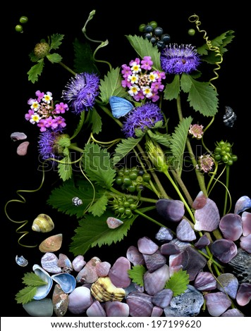 Beautiful natural composition made from flowers and seashells with butterfly. - stock photo