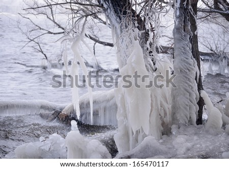 Beautiful Natural Ice Ornaments on the Trees. Unusual Winter Landscape