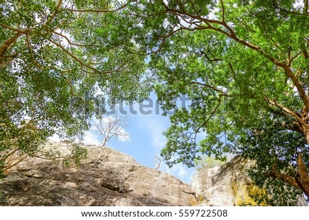 Beautiful natural view blue serene sky cliff rocks and green trees surrounding