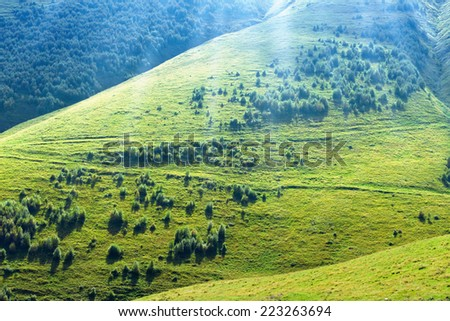 Beautiful nature background - hills with green grass and trees, bright sunlight from above - stock photo