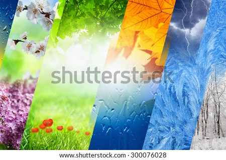 Beautiful nature collage - four seasons of year collage, vibrant images of different time of year - winter, spring, summer, autumn - stock photo