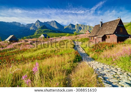 Beautiful nature landscape Gasienicowa Valley High Tatra Mountains national park. Carpathians, Poland - stock photo