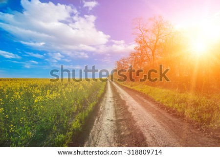 beautiful nature landscape. Sunshine in Bakota Park, Ukraine - stock photo