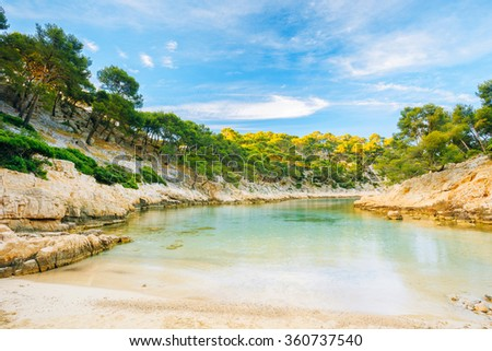 """Beautiful nature of Calanques on the azure coast of France. Coast """"De Port Pin"""" near Cassis in South France. Bay, pine forest and sunny blue sky. - stock photo"""