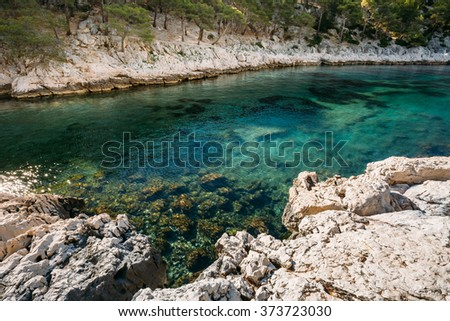 Beautiful nature of Calanques on the azure coast of France. Coast near Cassis in South France. Bay, pine forest at sunny morning - stock photo