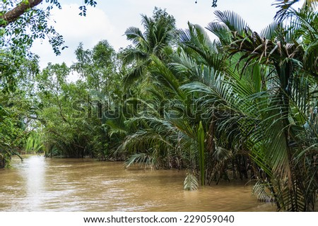 Beautiful nature of Mekong Delta in Vietnam