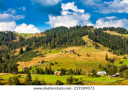 Beautiful nature of the mountains and hill in summer, ukraine