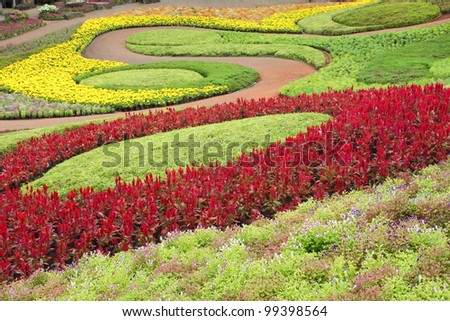 Beautiful nature path through in tropical garden - stock photo