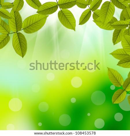 Beautiful Nature summer background - stock photo
