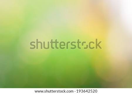 Beautiful Nature Yellow-Green Bokeh Blurred abstract light  background   - stock photo