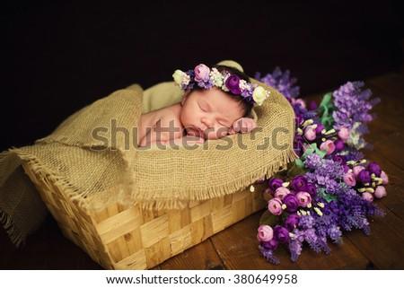 Beautiful newborn baby girl with a purple wreath sleeps in a wicker basket - stock photo
